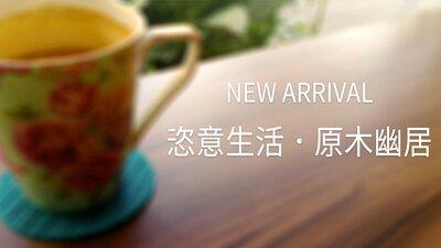 南方松防腐原木傢俱wooden-furniture