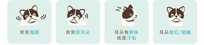 寵物耳朵健康出問題的常見徵狀:常常甩頭、常常抓耳朵、耳朵有異味或是汙垢、耳朵發紅或發腫。