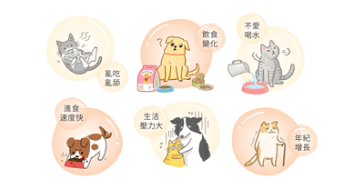 貓狗腸胃問題主因