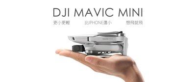 DJI Mavic Mini空拍機 比手機還小還輕 僅249公克 新手入門超適合