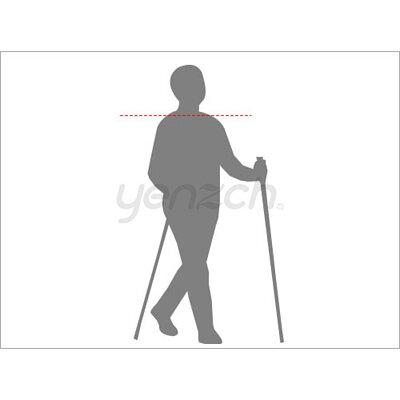 使用健走杖好處:調整走路姿勢