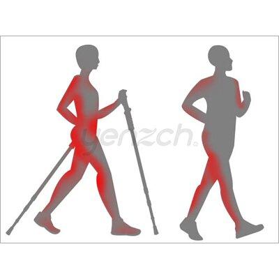 使用健走杖好處:提高運動量