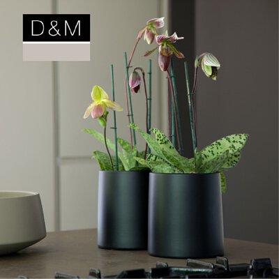 D&M,花器