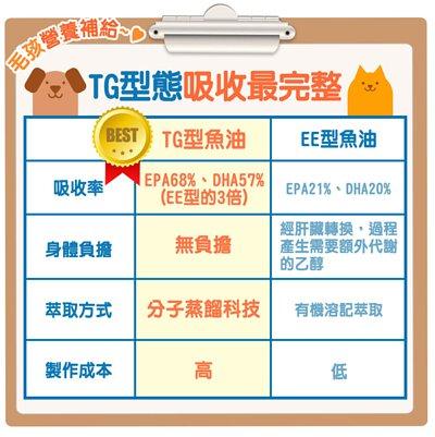 TG型態魚油,比EE型的吸收率高出三倍