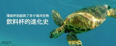 環保杯救了多少海洋生物,包含海龜、鯨魚、魚類