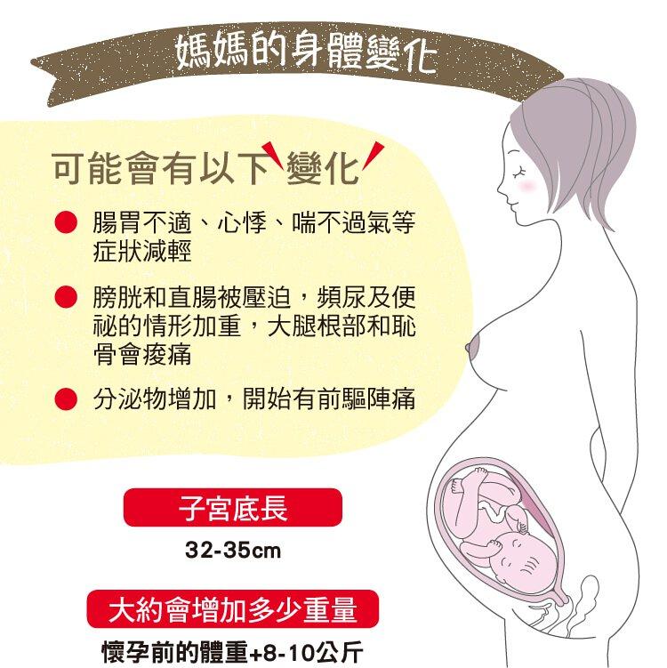 中期 出血 妊娠