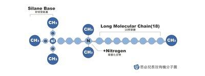 思必兒長效有機分子圖