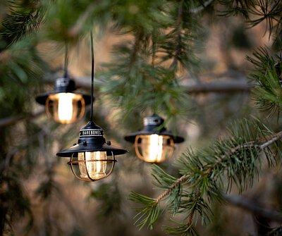 Barebones Edison String Lights 3串連接垂吊營燈