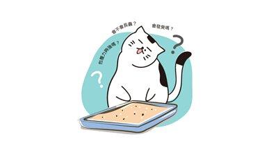 許多人都有疑問:豆腐砂真的好嗎?