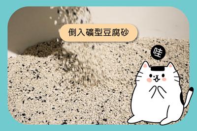 倒入礦型豆腐砂