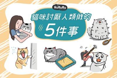 貓咪討厭人類做的五件事