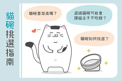 貓碗挑選指南
