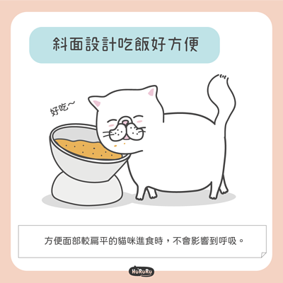 貓碗斜面設計吃飯好方便