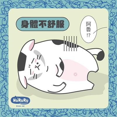 貓咪身體不舒服