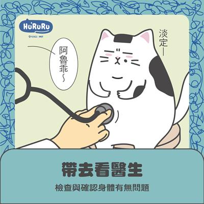 遇到貓咪亂上廁所時,你可以這樣做-帶去看醫生