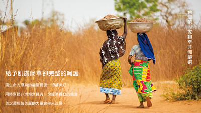 乳木果油 非洲婦女採乳木果