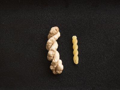 爆義大利螺旋麵,整體麵條變成2-31倍大