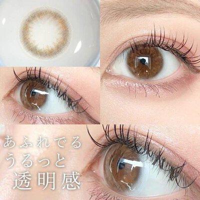 eyecloset 1 Day Silky Brown