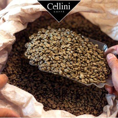 Italian Premium Coffee