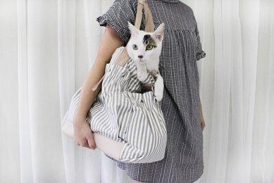 超大容量放一隻貓也沒問題