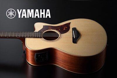 日本木吉他品牌yamaha各型號介紹,提供價格及試音檔