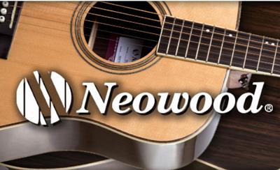 台灣澳洲聯合木吉他品牌Neowood各型號介紹,提供價格及試音檔