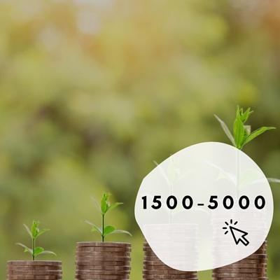 1500-5000的烏克麗麗