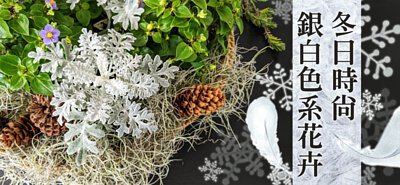 善用銀白色系花卉點綴、為冬日營造出時尚氛圍