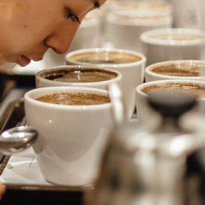 暖窩咖啡 SCA專業咖啡協會國際認證 咖啡檢視與品味