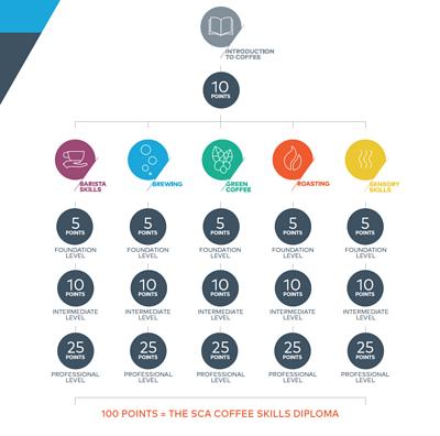 暖窩咖啡 SCA CSP咖啡技能學習計畫