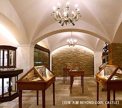 Beyond Cool Castle shop's photo