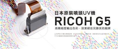 Ricoh G5 Print Head