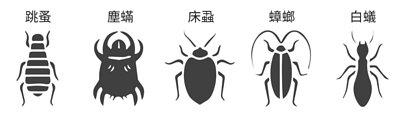 有效殺滅跳蚤、吸血臭蟲、塵蟎、蟑螂、白蟻、卜泥(書蚤)、衣魚(書蟲)等,無味無毒,可噴於任何地方包括床單、被褥、衫褲、雜物等。比市面上一般殺蟲劑例如曱甴屋、煙霧滅蚤彈、DE粉等更安全有效。
