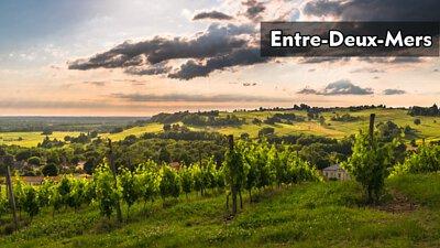 Entre-Deux-Mers|兩海之間|wine couple|醇酒伴侶
