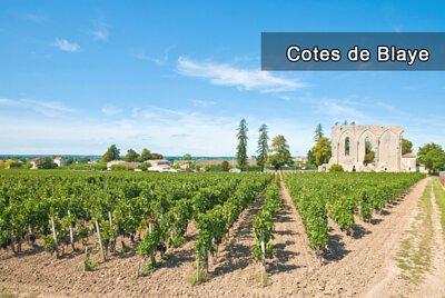 Cotes de Blaye, 布拉伊山坡, Cotes de Bordeaux