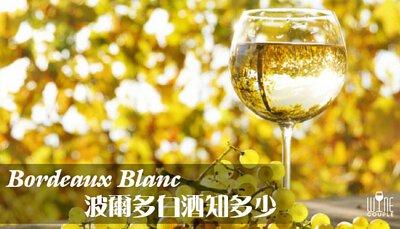 Bordeaux Blanc 波爾多白酒