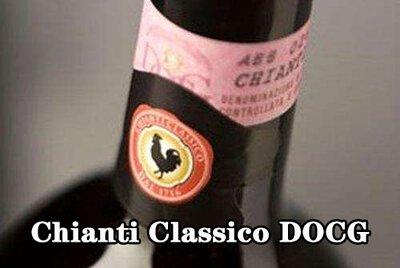 Chianti Classico DOCG 經典奇揚第