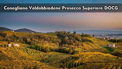 Conegliano Valdobbiadene Prosecco Superiore DOCG|科內利亞諾.瓦多比亞德內超級普洛賽克|wine couple 醇酒伴侶
