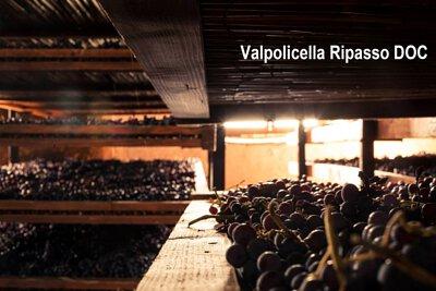 Valpolicella Ripasso DOC, 裏帕索, Veneto, Appassimento, 風乾葡萄, Passito, Recioto, 小阿瑪羅尼