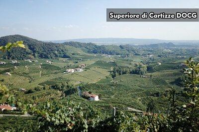 Superiore di Cartizze DOCG|超級卡迪茲法定產區|Valdobbiadene|Glera|Wine Couple 醇酒伴侶