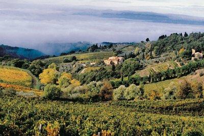 Super Tuscan, 超級托斯卡尼,  Castellare di Castellina, Sangioveto, Chianti Classico
