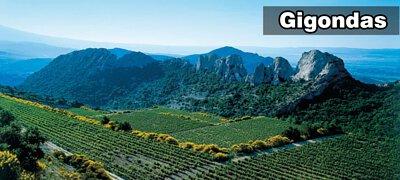Gigondas丨吉恭達斯丨羅納河谷丨Rhone Valley丨Wine Couple 醇酒伴侶