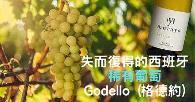Godello Grape