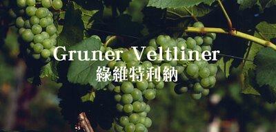 Gruner Veltliner, 綠維特利納, 白葡萄, 釀酒葡萄, 奧地利葡萄, grape, Veltliner