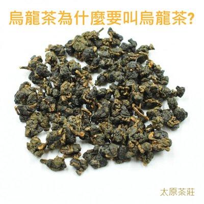 烏龍茶為什麼要叫烏龍茶?