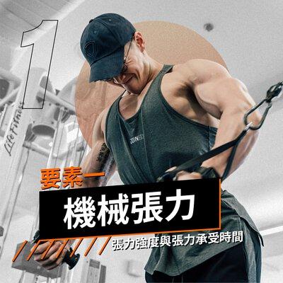 肌肥大要素,機械張力