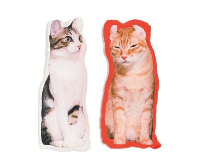 台灣製客製化形體充棉抱枕 - 全彩熱昇華印刷、環保無毒墨水、雙面皆可印