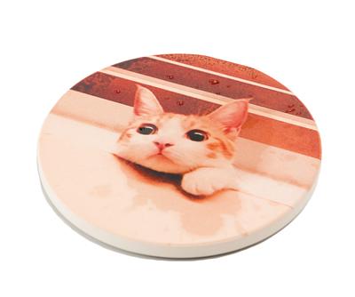 台灣製吸水杯墊 - 正面彩印寵物貓照片