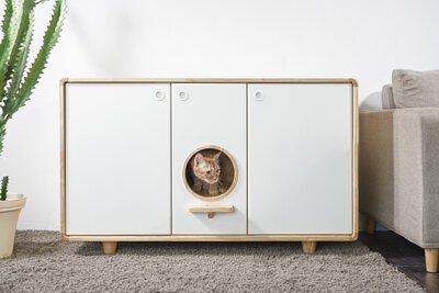 貓咪的頭從櫃子中間探出來
