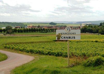 wine time,酒在當下,Chablis,Ellevin,Vaucoupin,Burgundy,勃根地,Chadonnay,France,法國,Ellevin C